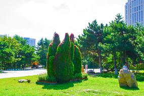 沈阳中山公园仙人掌园艺造型