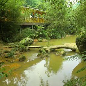 赤水四洞沟山谷小溪的小石桥