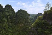 山林茂密的新昌十九峰