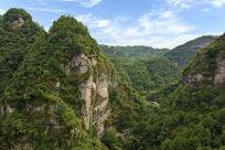 新昌十九峰景区的茂密山林
