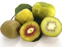 绿果猕猴桃