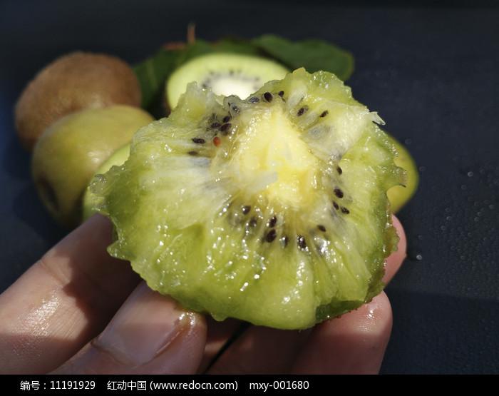 绿色果树猕猴桃图片