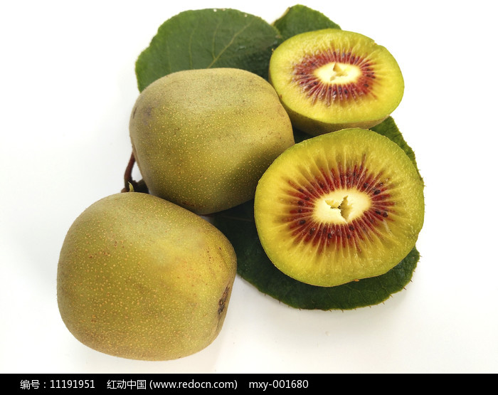 绿叶猕猴桃图片