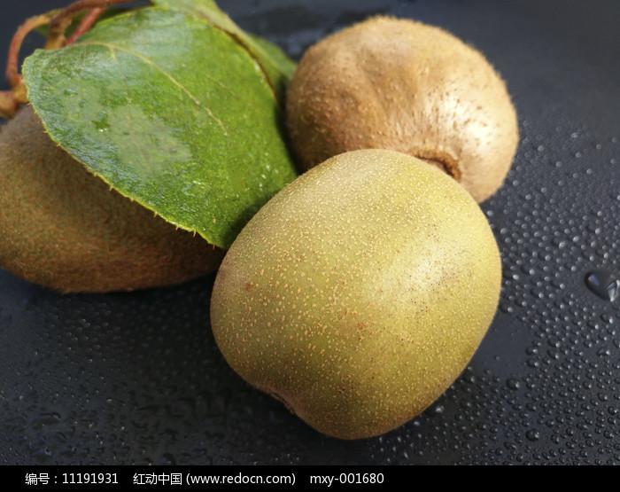 绿叶静物猕猴桃图片