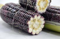 近拍紫玉米