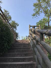 公园阶梯摄影图