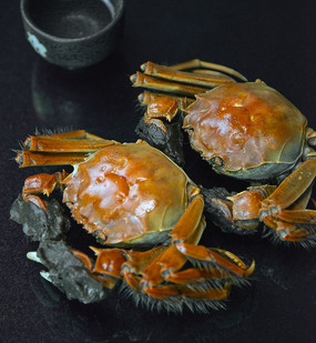 两只大闸蟹