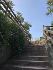 无人的阶梯