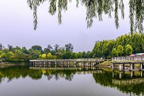 南阳市白河湿地公园风光