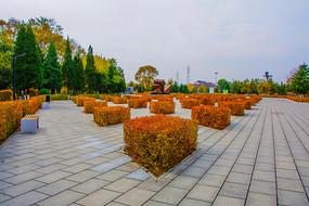 平顶山纪念馆广场群雕与树木
