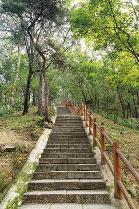 公园里的石头台阶