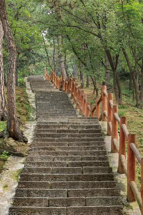 森林公园里的石头台阶