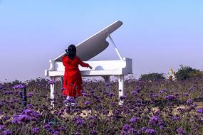花海里弹钢琴的女人