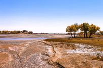 秋天的弱水河畔风光