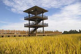 稻田瞭望观光塔