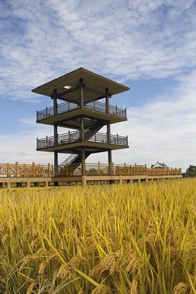 稻香村瞭望台