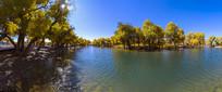 秋天的额济纳胡杨林湖景