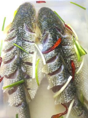 两条红烧鱼