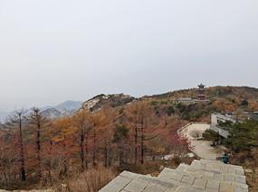 秋天的山頂風光