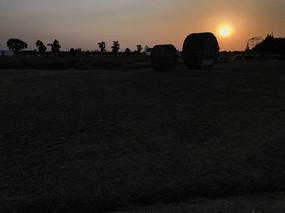郊外田野夕阳