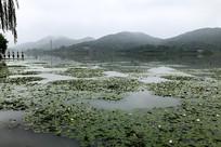 慈溪古镇白洋湖