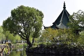 无锡蠡园景观