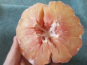 鲜红心柚图片