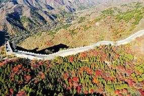 八达岭长城红叶谷