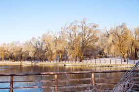 冻雨雪后的湖