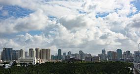 高楼建筑群
