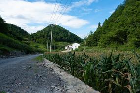 重庆巫山红椿土家族乡土路