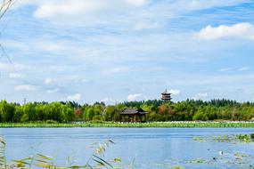湿地湖面风光