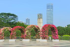 深圳市民中心广场鲜花廊架