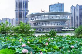 长沙梅溪湖公园城市岛双螺旋观景平台