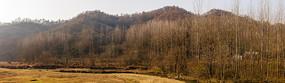 宽幅冬天山林图