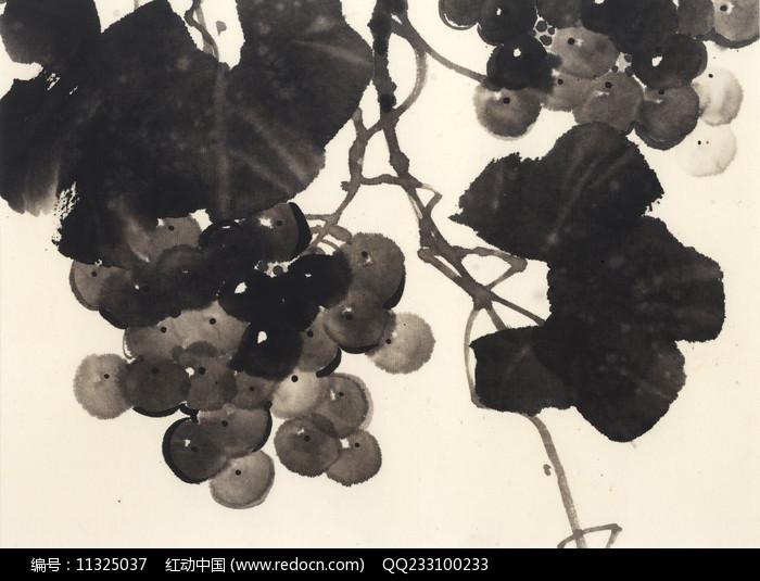 黑白葡萄水墨画图片