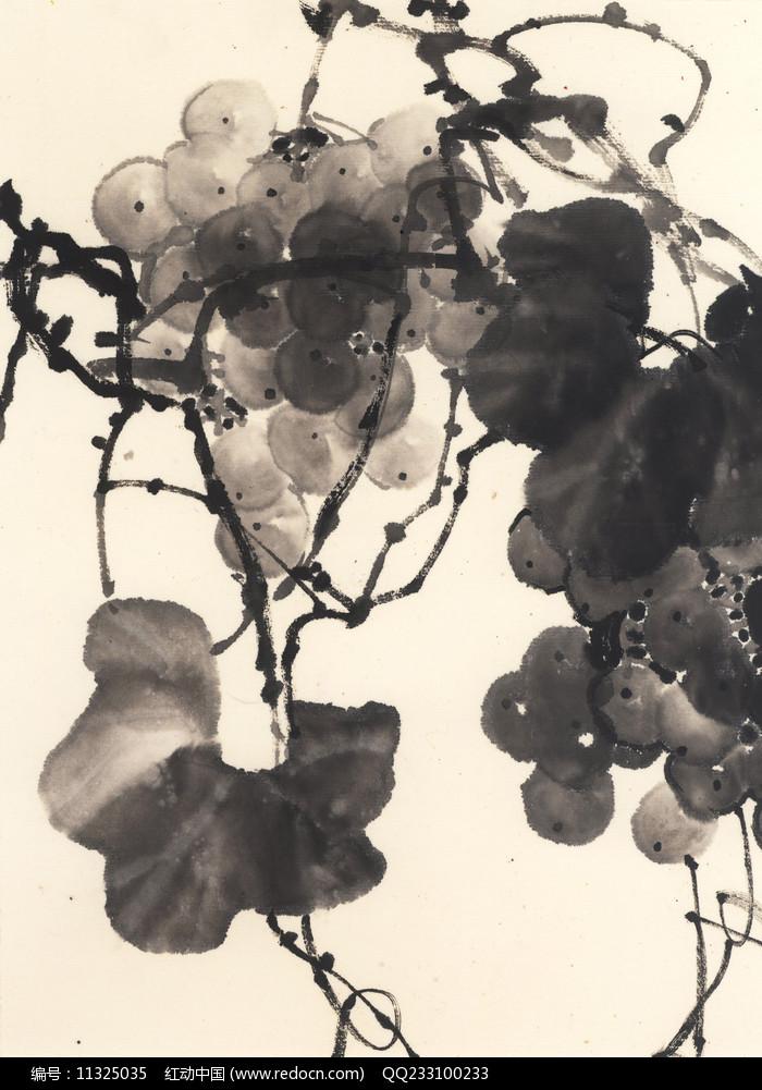 水墨葡萄国画图片