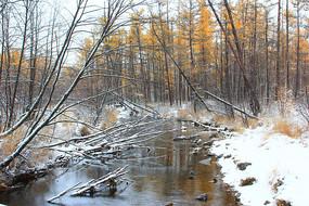 林海秋色河流雪景
