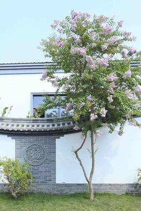 中式磚雕庭院