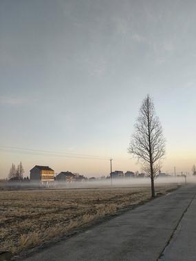 寒冬村庄-腊月薄雾起