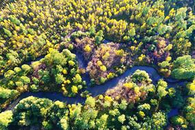 航拍大兴安岭秋季森林河