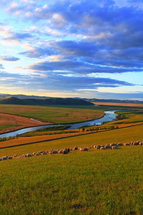 呼伦贝尔草原河湾牧场羊群