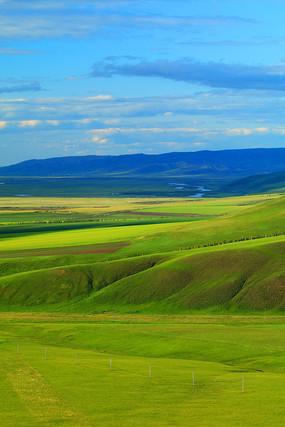 草原牧场风景