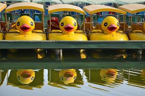 小黄鸭游船
