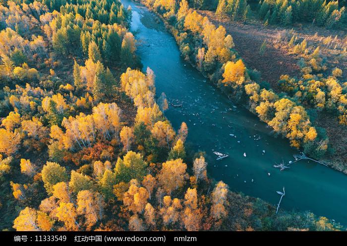 大兴安岭森林河秋色图片