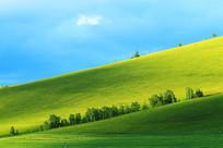 呼伦贝尔草原山地牧场