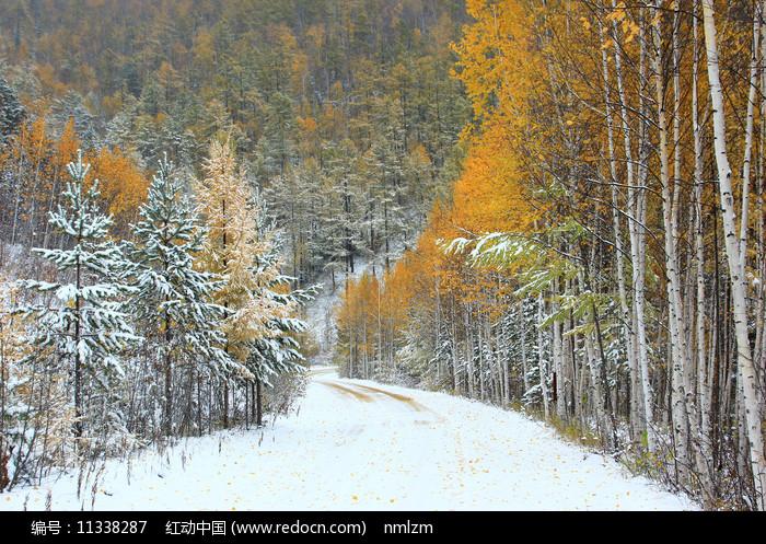 大兴安岭林海秋色山路雪景图片