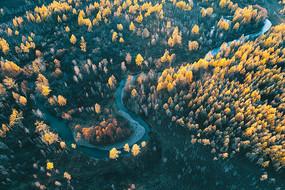 大兴安岭秋季河流秋色