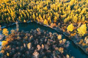 大兴安岭秋季密林河湾