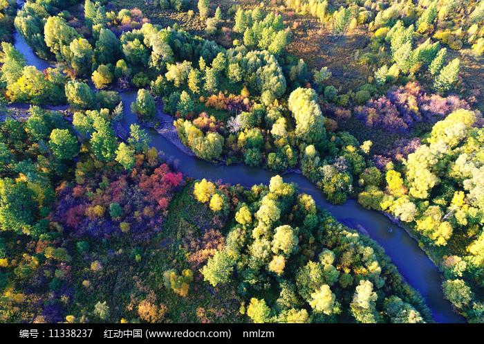 大兴安岭秋季密林小河图片